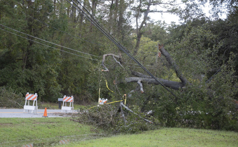 Powerline downed by trees